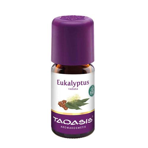 Eukalyptus radiata Öl Bio - 1