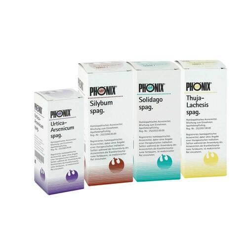 Phönix Set zur Entgiftungstherapie - 1