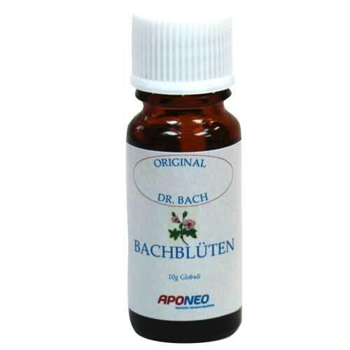 Bach Bluete Walnut 33 - 1