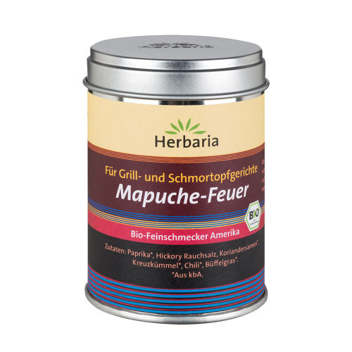 Mapuche Feuer - 1