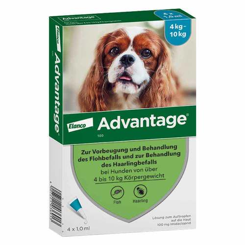 Advantage Hund - 1