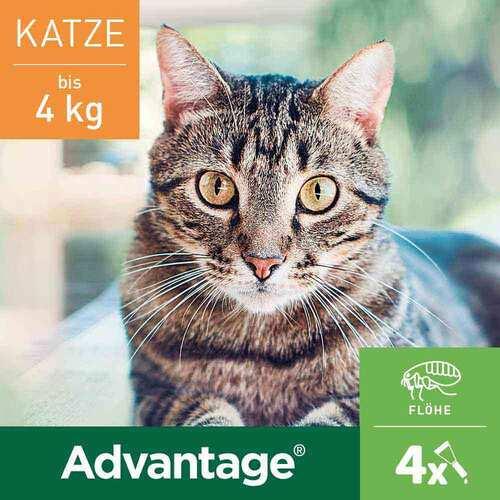 Advantage Katzen und Zierkaninchen - 2