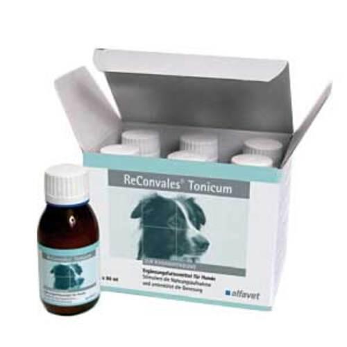 Reconvales Tonicum für Hunde - 1