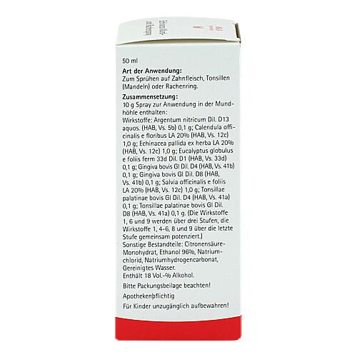 Echinacea Mund- und Rachenspray - 2