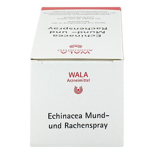 Echinacea Mund- und Rachenspray - 4