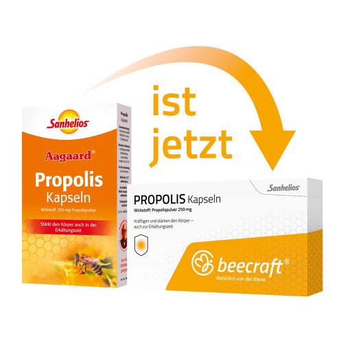 Beecraft Propolis Kapseln - 1
