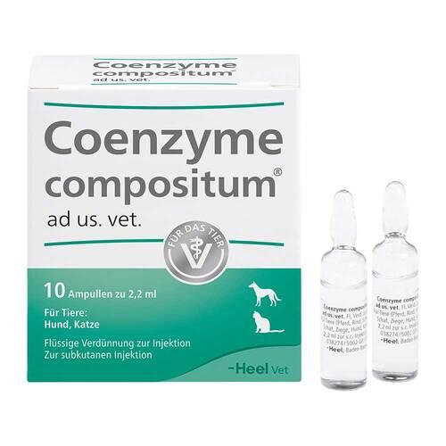 Coenzyme compositum ad us.vet.Ampullen - 1