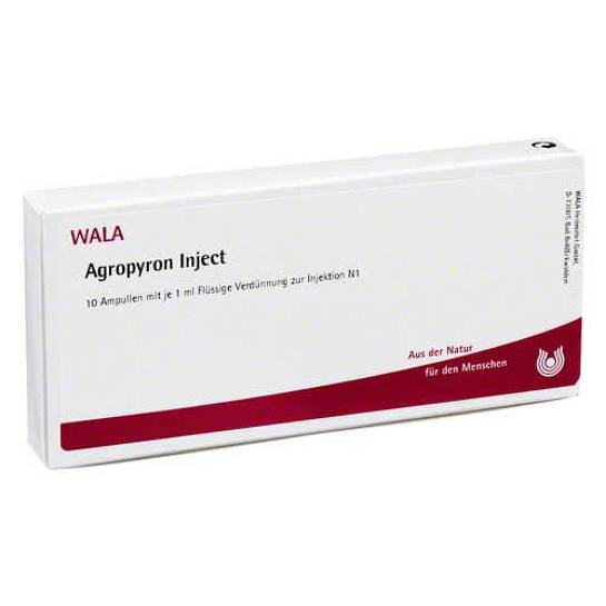Agropyron Inject Ampullen - 1