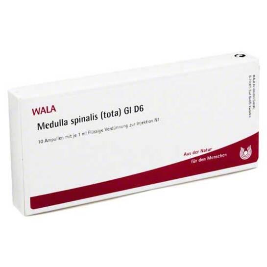 Medulla Spinalis Tota GL D 6 Ampullen - 1